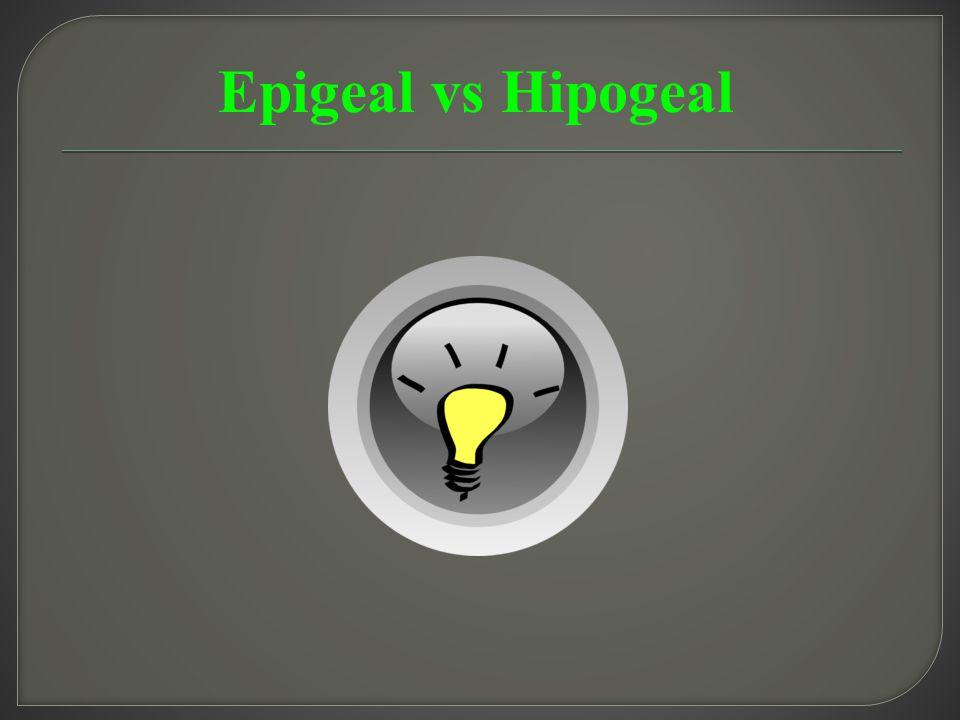 Epigeal vs Hipogeal