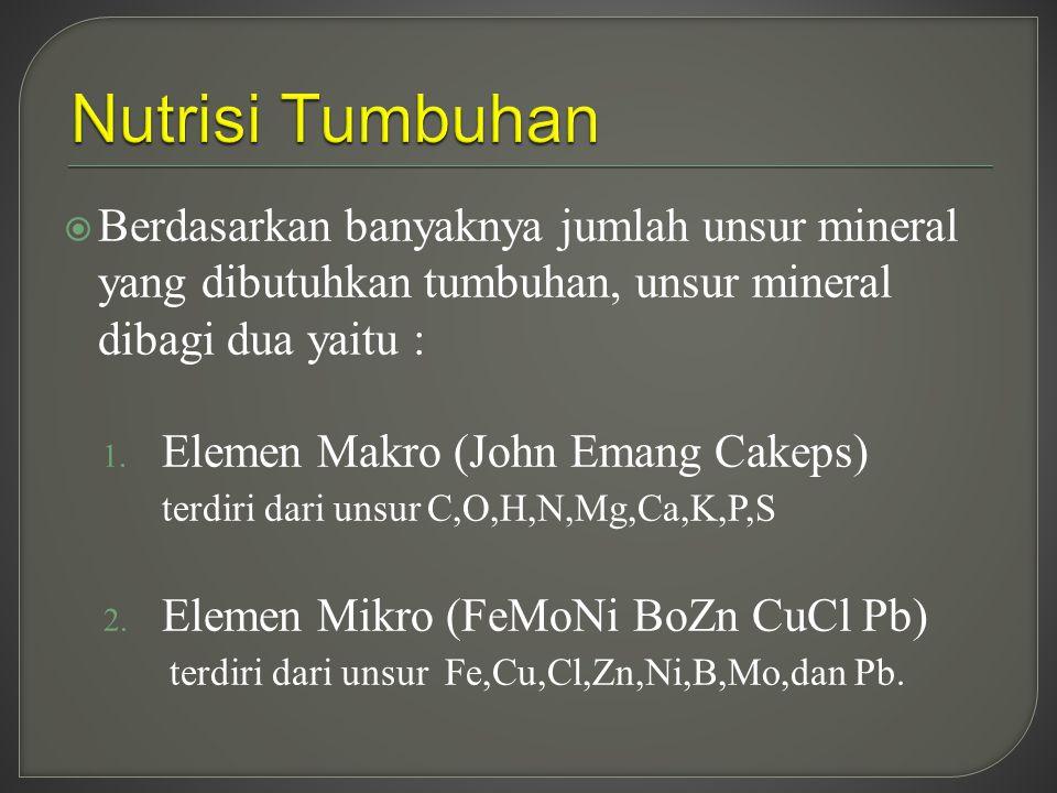  Berdasarkan banyaknya jumlah unsur mineral yang dibutuhkan tumbuhan, unsur mineral dibagi dua yaitu : 1. Elemen Makro (John Emang Cakeps) terdiri da