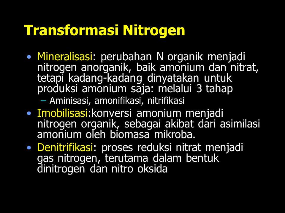 Transformasi Nitrogen Mineralisasi: perubahan N organik menjadi nitrogen anorganik, baik amonium dan nitrat, tetapi kadang-kadang dinyatakan untuk pro