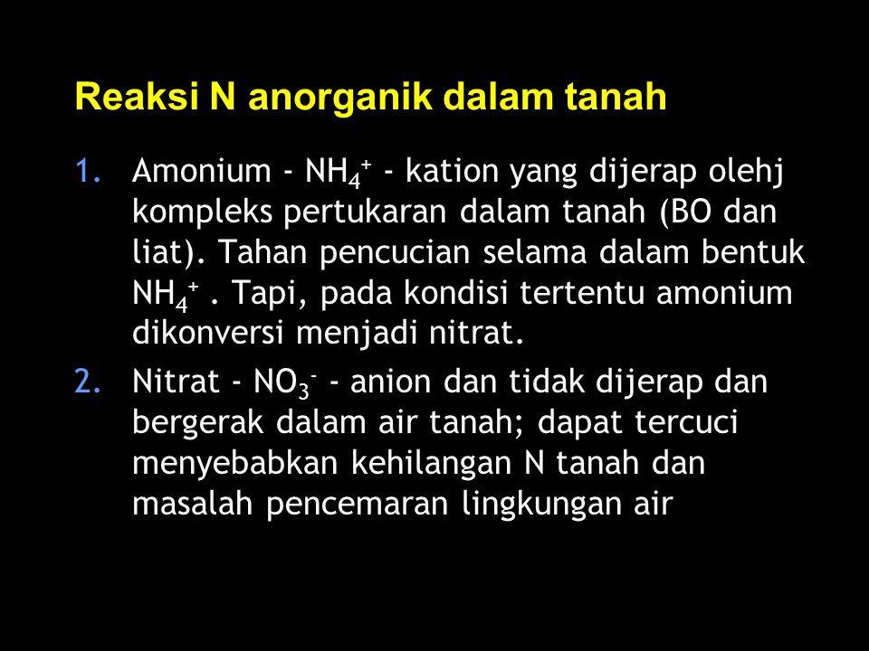 Reaksi N anorganik dalam tanah 1.Amonium - NH 4 + - kation yang dijerap olehj kompleks pertukaran dalam tanah (BO dan liat). Tahan pencucian selama da