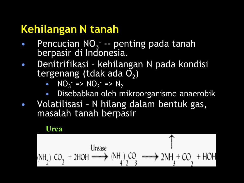 Kehilangan N tanah Pencucian NO 3 - -- penting pada tanah berpasir di Indonesia.