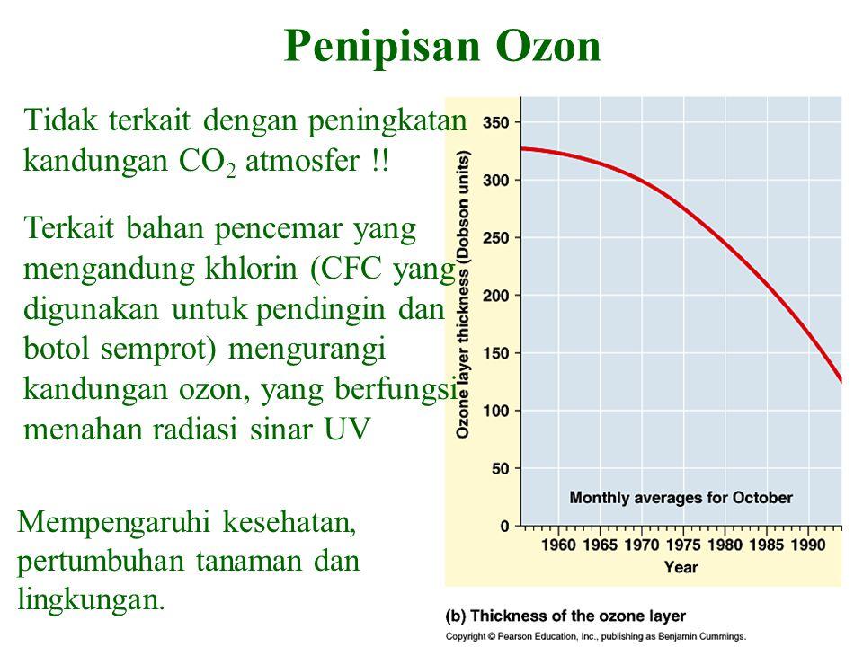 Penipisan Ozon Tidak terkait dengan peningkatan kandungan CO 2 atmosfer !! Terkait bahan pencemar yang mengandung khlorin (CFC yang digunakan untuk pe