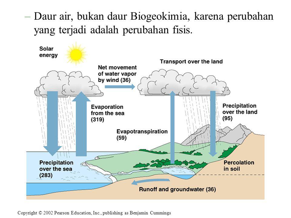 –Daur air, bukan daur Biogeokimia, karena perubahan yang terjadi adalah perubahan fisis. Copyright © 2002 Pearson Education, Inc., publishing as Benja