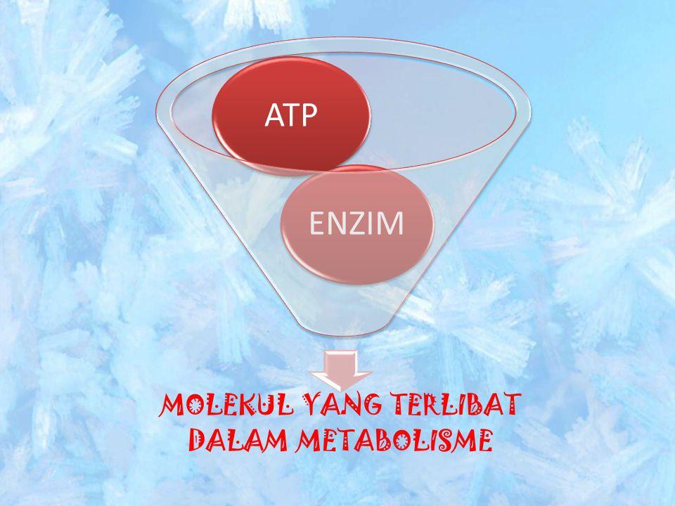 1 Adalah nukleotida yang tersusun atas adenosin, gula ribosa, dan 3 buah posfat 2 ENZIM Adalah senyawa organik yang tersusun atas protein, berperan sebagai biokatalisator ENZIM sangat dipengaruhi oleh berbagai faktor diantaranya :  Suhu  pH  Kadar air  Jumlah enzim  Konsentrasi enzim  Inhibitor