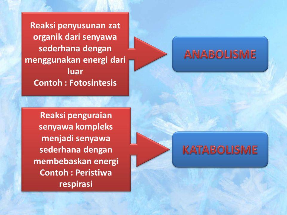 Reaksi penyusunan zat organik dari senyawa sederhana dengan menggunakan energi dari luar Contoh : Fotosintesis Reaksi penyusunan zat organik dari seny