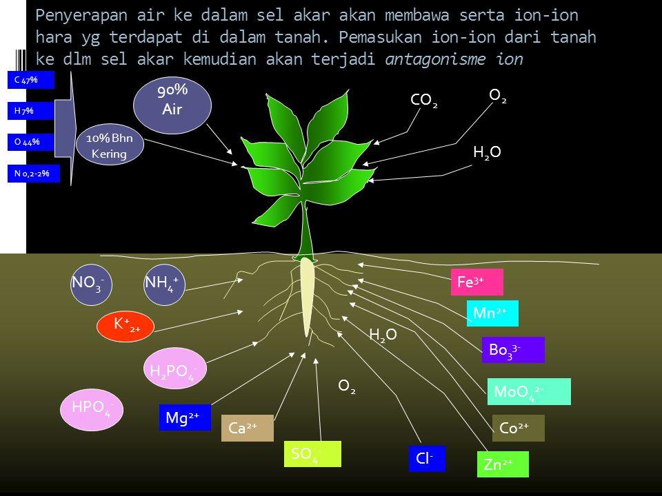Penyerapan air ke dalam sel akar akan membawa serta ion-ion hara yg terdapat di dalam tanah. Pemasukan ion-ion dari tanah ke dlm sel akar kemudian aka