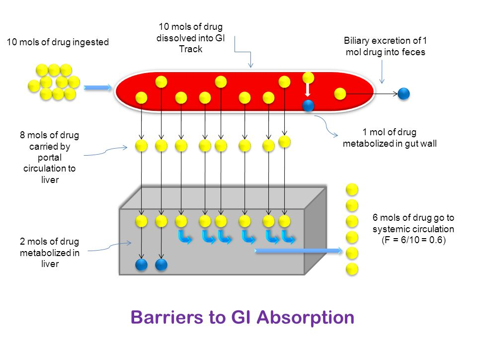 Barriers to GI Absorption Biliary excretion of 1 mol drug into feces 10 mols of drug dissolved into GI Track 10 mols of drug ingested 1 mol of drug me