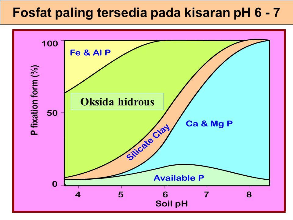 Tata-nama anion fosfat H 3 PO 4 = phosphoric acid H 2 PO 4 - = monobasic HPO 4 -2 = dibasic PO 4 -3 = tribasic