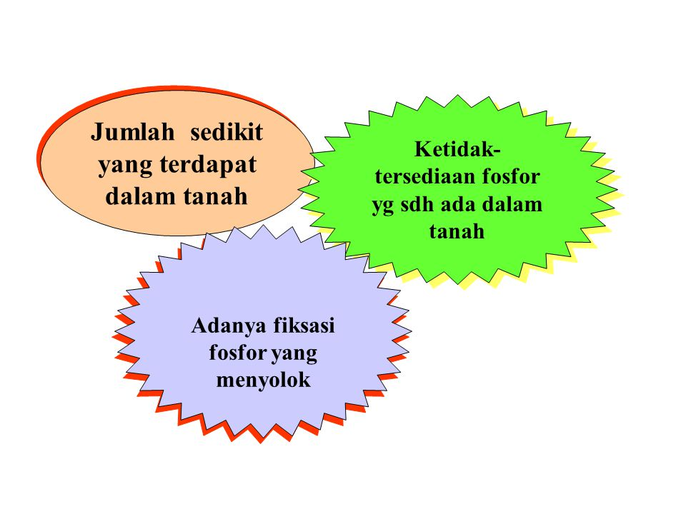 diunduh dari: ….. http://www.biocyclopedia.com/index/plant_nutrition/essential_elements_macronutrients/phosphorus/nature_and_transformations_of _soil_