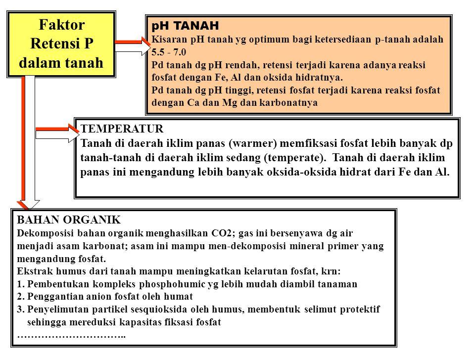 Faktor Retensi P dalam tanah TIPE LIAT Tanah-tanah liat lebih banyak meretensi & memfiksasi p- pupuk daripada tanah berpasir Liat silikat tipe 1:1 mem