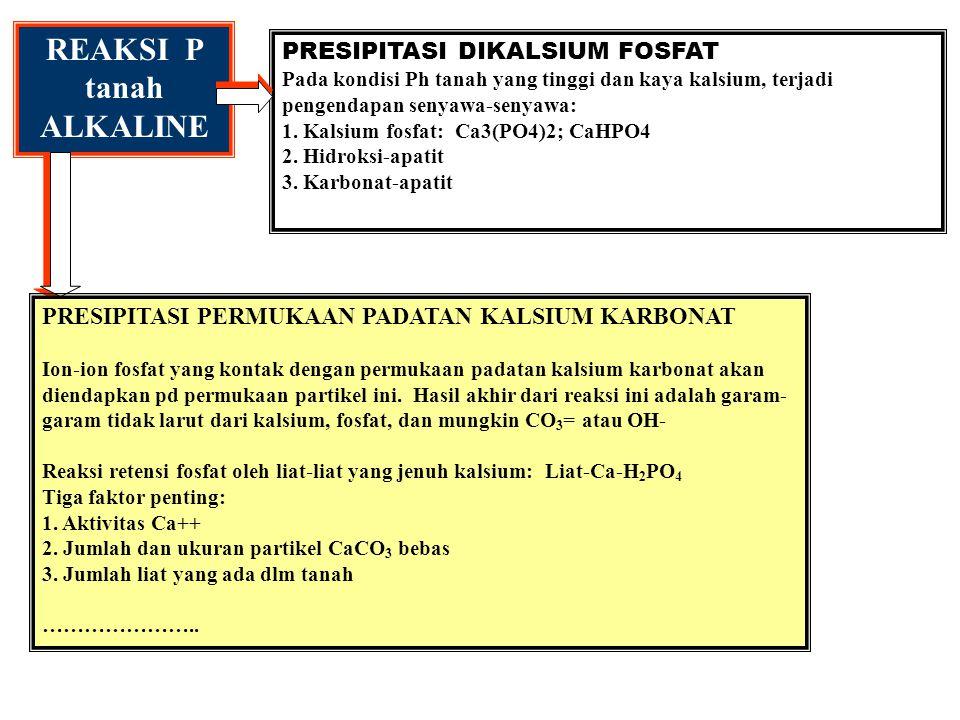 1. H 2 PO 4 - dlm larutan tanah < 10 ppm, dlm tanaman 2000 ppm 2. Konsentrasi optimum unt jagung dan buncis: 0.07 ppm pd tnh berliat Ultisol, Oxisol 0