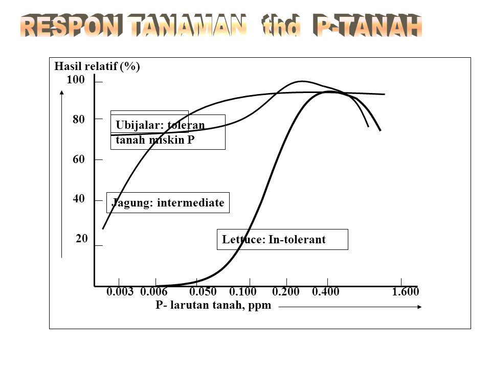 Tanaman Hasil, t/haP-removal, kg/ha 1. JagungBiji: 1.0 6 Jerami: 1.5 3 Biji: 7.020 Jerami: 7.014 2. PadiBiji: 1.5 7 Jerami: 1.5 1 Biji: 8.032 Jerami: