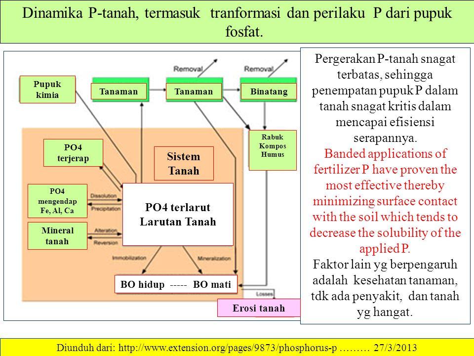 ABSORPSI & OKLUSI P-TANAH Absorpsi P- terjerap ke dalam mineral tganah (a) dan Oklusi lebih lanjut P-terjerap b) Diunduh dari: ……… 27/3/2013 Mineral t