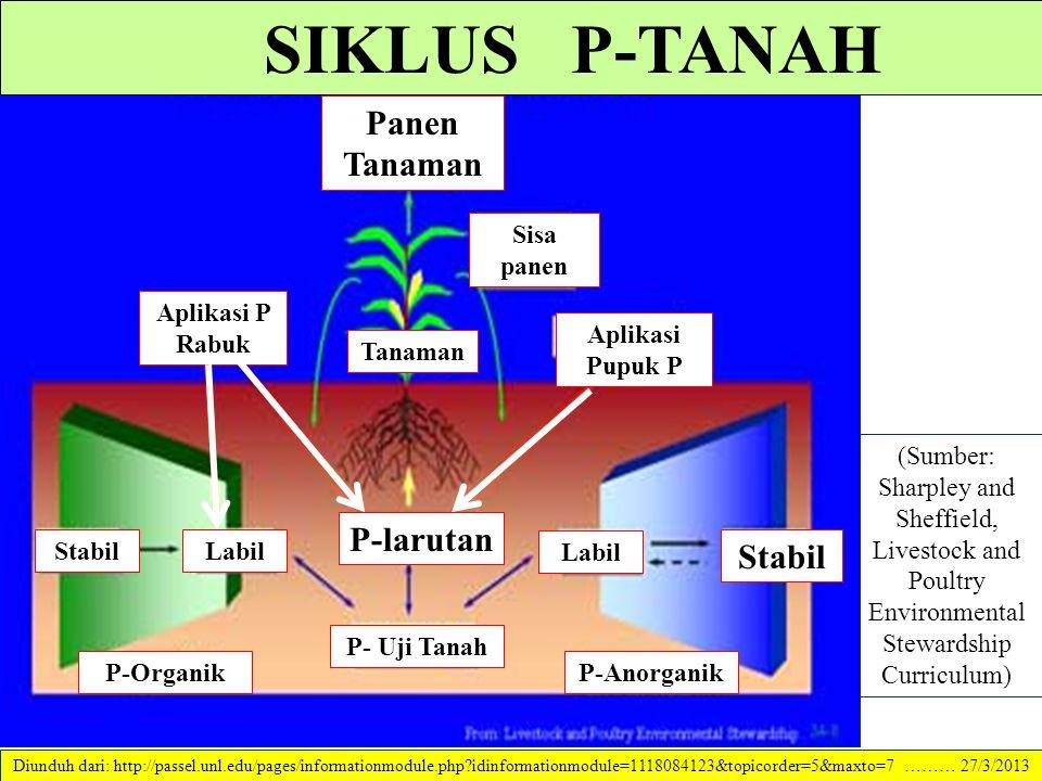 """Bentuk-bentuk P yang ada dalam tanah. P dalam tanah dapat dikelompokkan menjadi tiga """"pool"""" yg berbeda tingkat ketersediaannya bagi tanaman. These poo"""