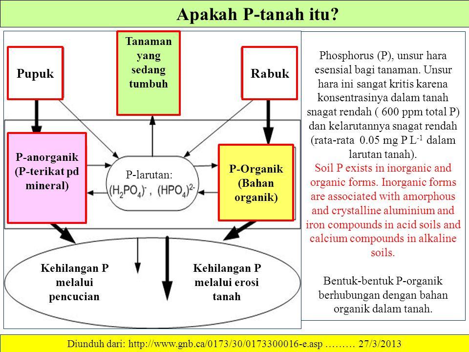 SIKLUS P DALAM TANAH Diunduh dari: http://www.env.go.jp/en/wpaper/1995/eae240000000010.html ……… 27/3/2013 Tanaman Akar Tanaman Sisa Tanaman P larut ai