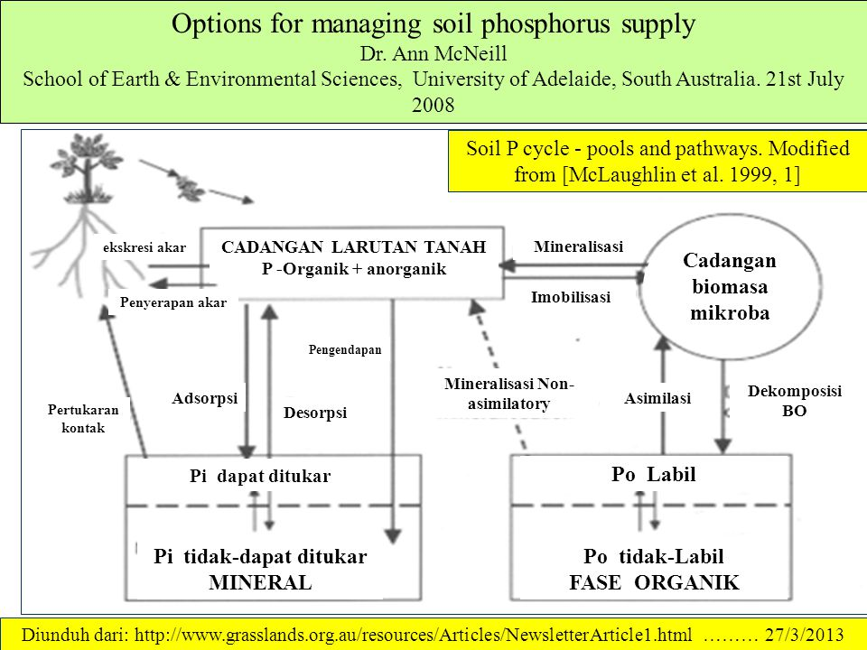 Options for managing soil phosphorus supply Dr.