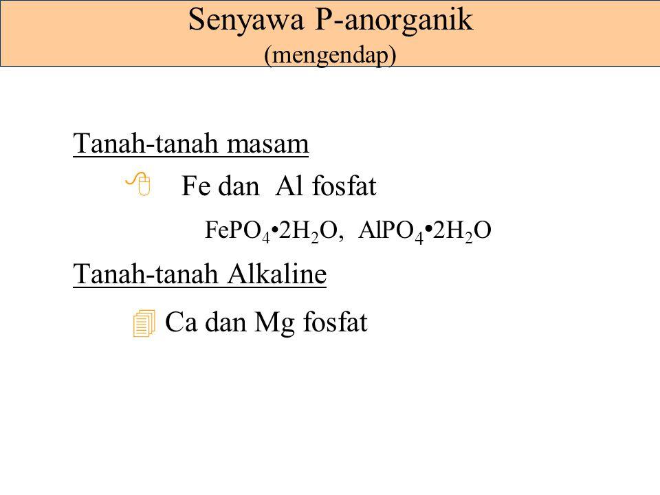 Reaksi-reaksi Adsorpsi = Penjerapan Adsorpsi kuat pada tanah-tanah mineral - adsorpsi pada oksida-oksida Fe- dan Al - adsorpsi pada tepian patahan min