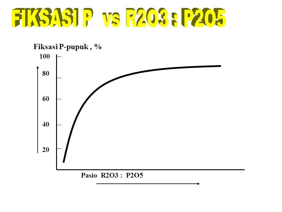 Faktor Retensi P dalam tanah BAHAN ORGANIK Lanjutan ……. Dekomposisi bahan organik menghasilkan anion-anion yang mampu membentuk senyawa kompleks denga