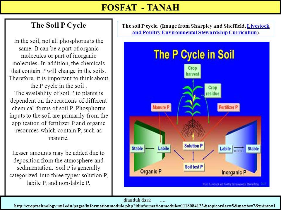 Siklus Lambat P-anorganik Siklus Cepat P-anorganik & Organik Siklus Lambat P-Organik P-mineral primer (HCl-Pi) P-mineral sekunder (NaOH-Pi) (P-residu) P-terfiksasi (Sonic-Pi) (P-residu) P- larutan tanah P- dalam tanaman & jasad tanah P-terlarut labil (Resin-P) P-terfiksasi labil (Bikarbonat-Po) P-terlarut agak labil (P-terfiksasi) (Bikarbonat-Pi) P-terfiksasi agak labil (NaOH-Po) P-organik terfiksasi secara kimia dan fisika (Sonic-Po) (Residu-Po) Siklus Transformasi P-tanah (Hedley et al.