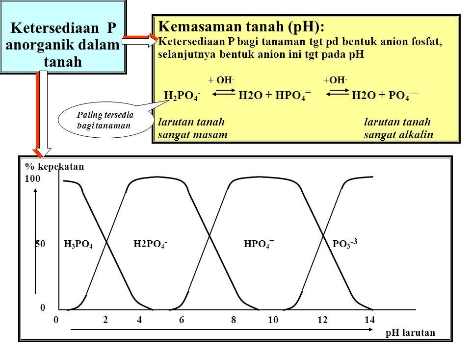 Macroscale Chemical Properties and X-Ray Absorption Spectroscopy of Soil Phosphorus Dean Hesterberg.