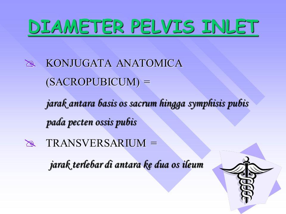 DIAMETER PELVIS INLET DIAMETER PELVIS INLET KKKKONJUGATA ANATOMICA (SACROPUBICUM) = jarak antara basis os sacrum hingga symphisis pubis pada pecte