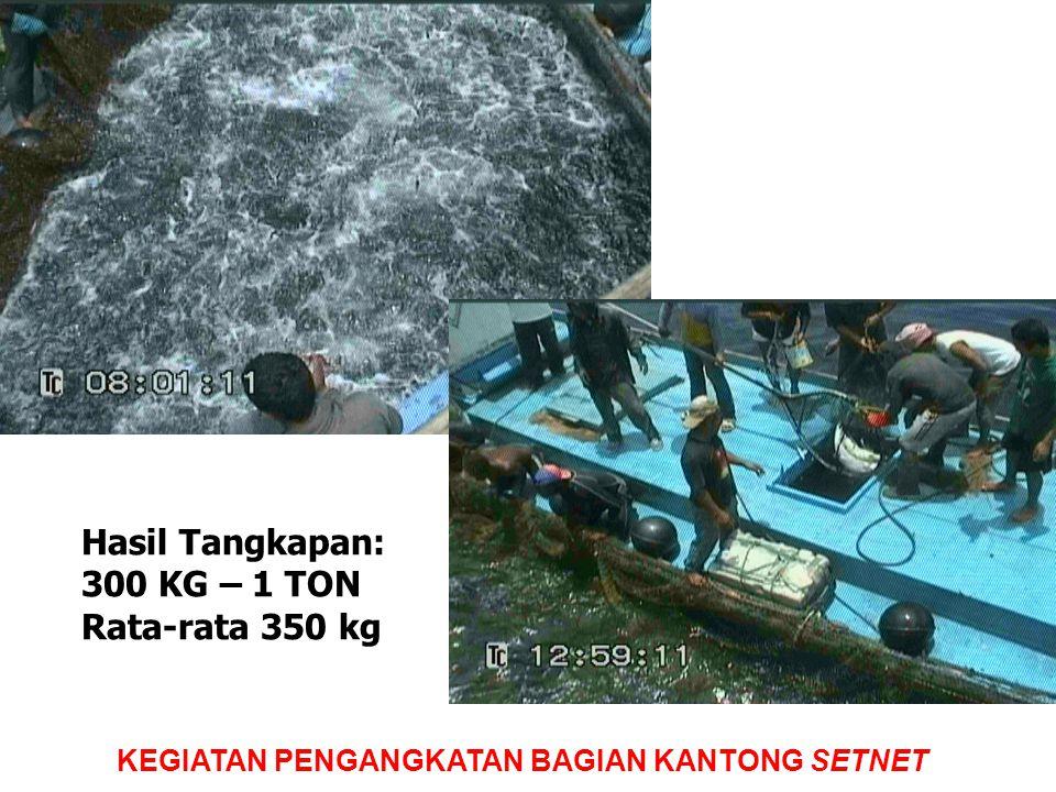 KEGIATAN PENGANGKATAN BAGIAN KANTONG SETNET Hasil Tangkapan: 300 KG – 1 TON Rata-rata 350 kg