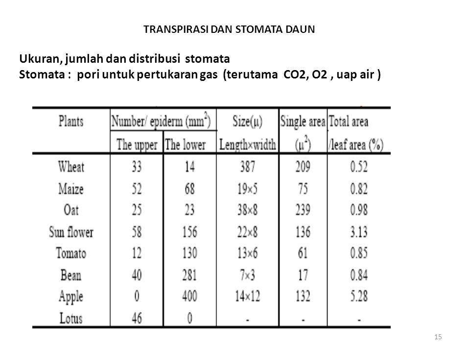 15 TRANSPIRASI DAN STOMATA DAUN Ukuran, jumlah dan distribusi stomata Stomata : pori untuk pertukaran gas (terutama CO2, O2, uap air )