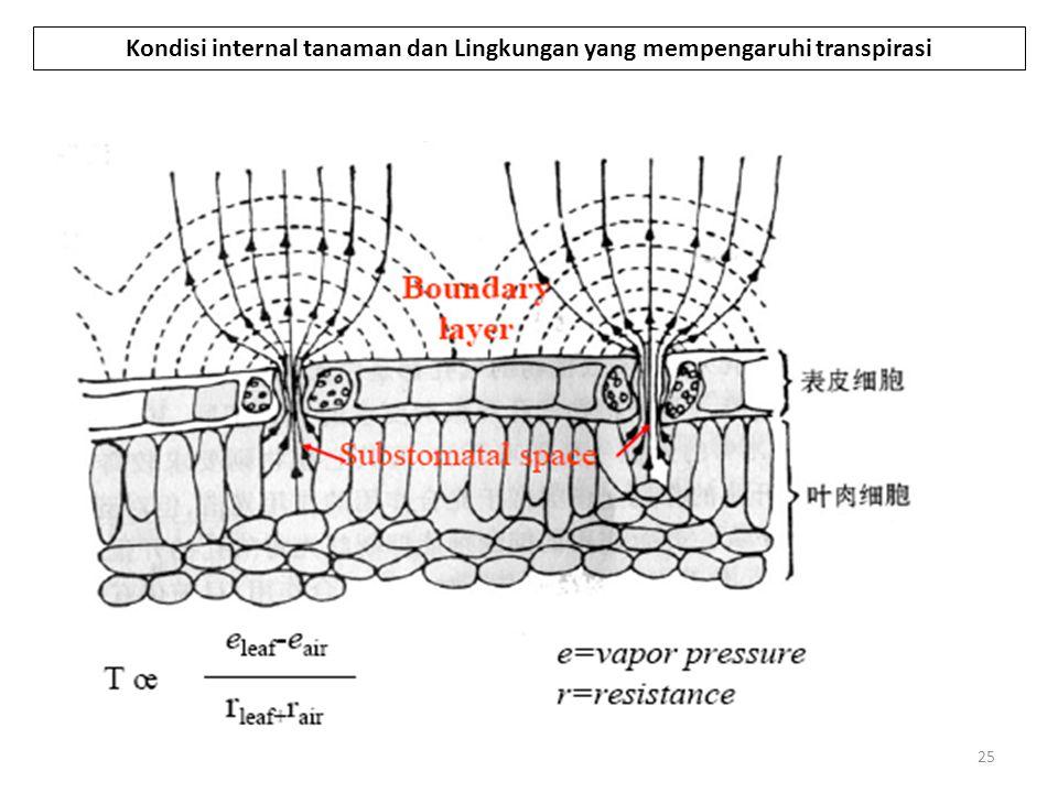 25 Kondisi internal tanaman dan Lingkungan yang mempengaruhi transpirasi