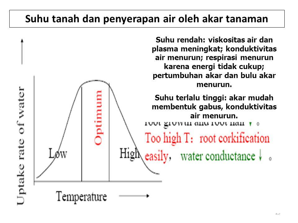 29 Suhu tanah dan penyerapan air oleh akar tanaman Suhu rendah: viskositas air dan plasma meningkat; konduktivitas air menurun; respirasi menurun karena energi tidak cukup; pertumbuhan akar dan bulu akar menurun.