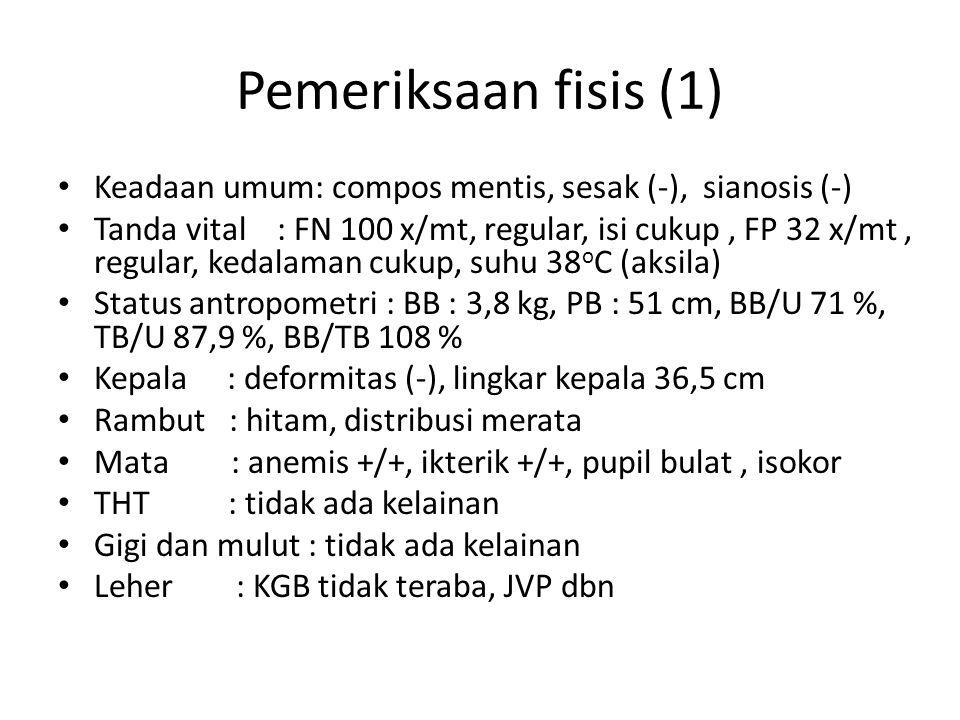 Pemeriksaan fisis (2) Dada : simetris statis dan dinamis Jantung : BJ I-II N, murmur (-), gallop (-) Paru : vesikuler, ronki -/-, mengi -/- Abdomen : buncit, lemas, hepar 8 cm bpx 4 cm bac, lien normal, BU + normal Punggung : deformitas (-), skoliosis (-) Ekstremitas : akral hangat, perfusi perifer cukup, udem (-)