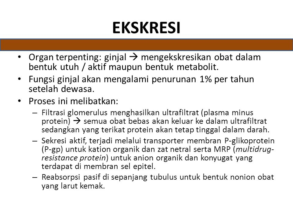 EKSKRESI Organ terpenting: ginjal  mengekskresikan obat dalam bentuk utuh / aktif maupun bentuk metabolit.