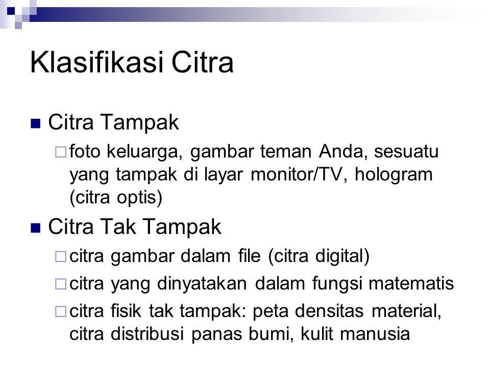 Klasifikasi Citra Citra Tampak  foto keluarga, gambar teman Anda, sesuatu yang tampak di layar monitor/TV, hologram (citra optis) Citra Tak Tampak 
