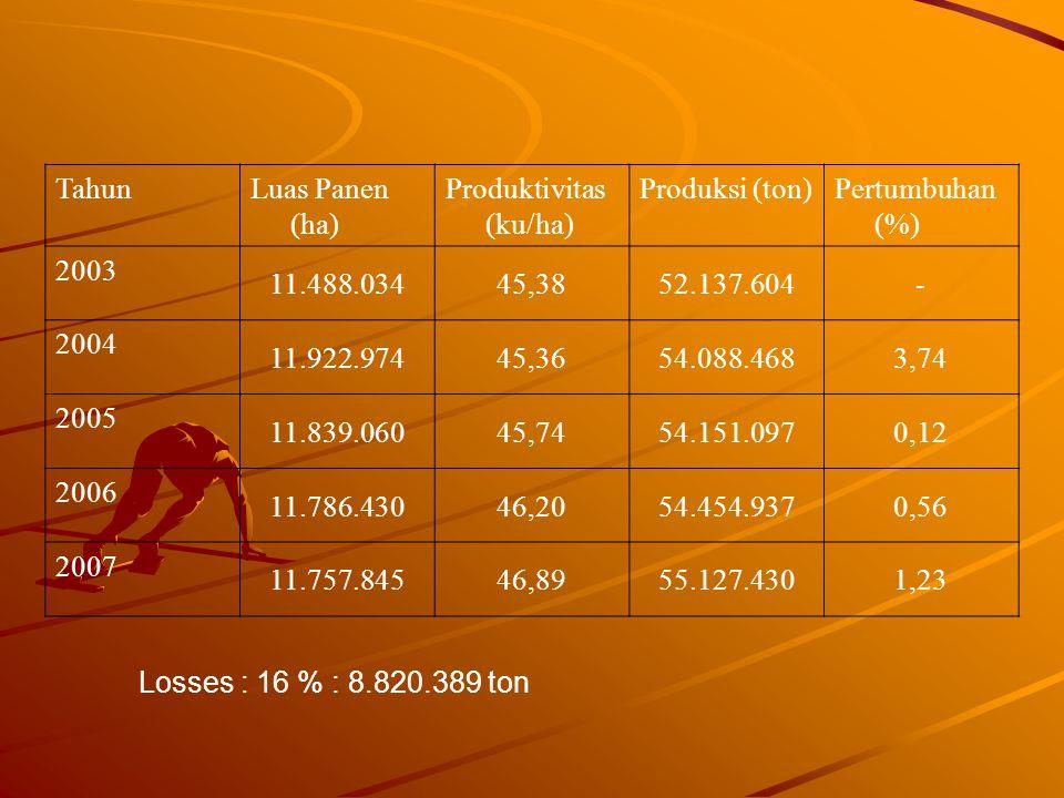 TahunLuas Panen (ha) Produktivitas (ku/ha) Produksi (ton)Pertumbuhan (%) 2003 11.488.03445,3852.137.604- 2004 11.922.97445,3654.088.4683,74 2005 11.83