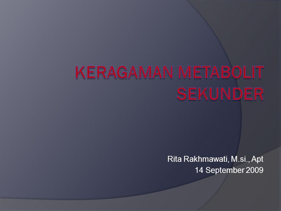 Rita Rakhmawati, M.si., Apt 14 September 2009