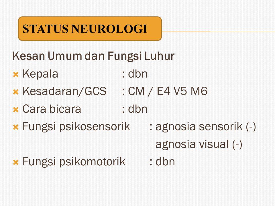Kesan Umum dan Fungsi Luhur  Kepala: dbn  Kesadaran/GCS: CM / E4 V5 M6  Cara bicara : dbn  Fungsi psikosensorik: agnosia sensorik (-) agnosia visu