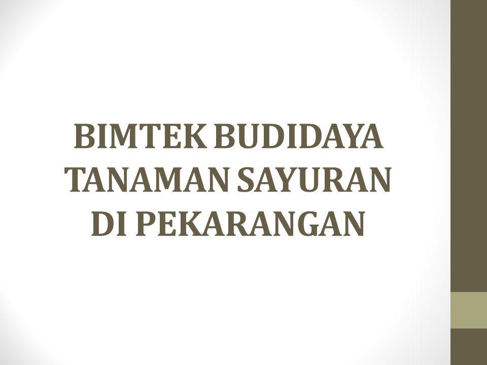 BIMTEK BUDIDAYA TANAMAN SAYURAN DI PEKARANGAN