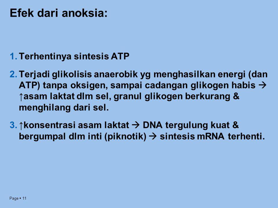 Page  11 Efek dari anoksia: 1.Terhentinya sintesis ATP 2.Terjadi glikolisis anaerobik yg menghasilkan energi (dan ATP) tanpa oksigen, sampai cadangan
