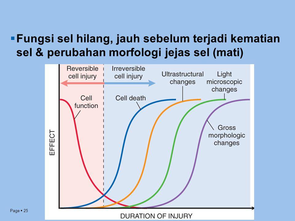 Page  25  Fungsi sel hilang, jauh sebelum terjadi kematian sel & perubahan morfologi jejas sel (mati)