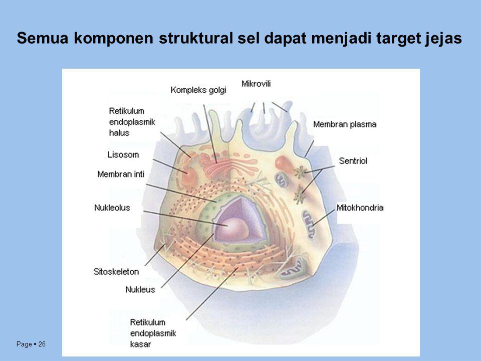 Page  26 Semua komponen struktural sel dapat menjadi target jejas