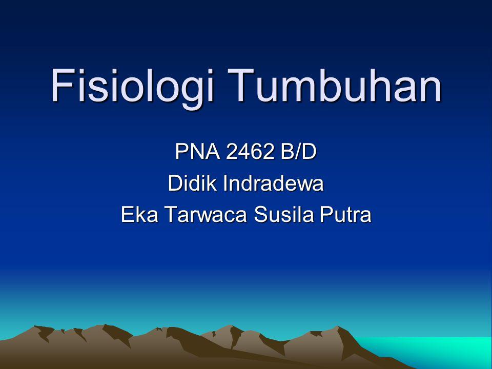 Fisiologi Tumbuhan PNA 2462 B/D Didik Indradewa Eka Tarwaca Susila Putra