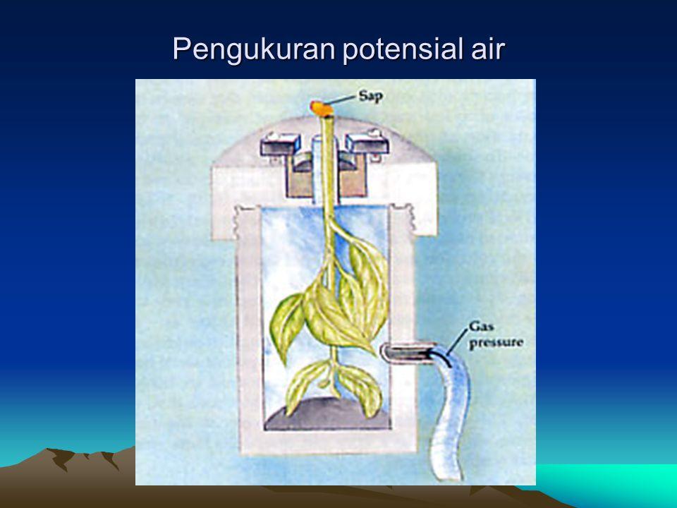 Pengukuran potensial air