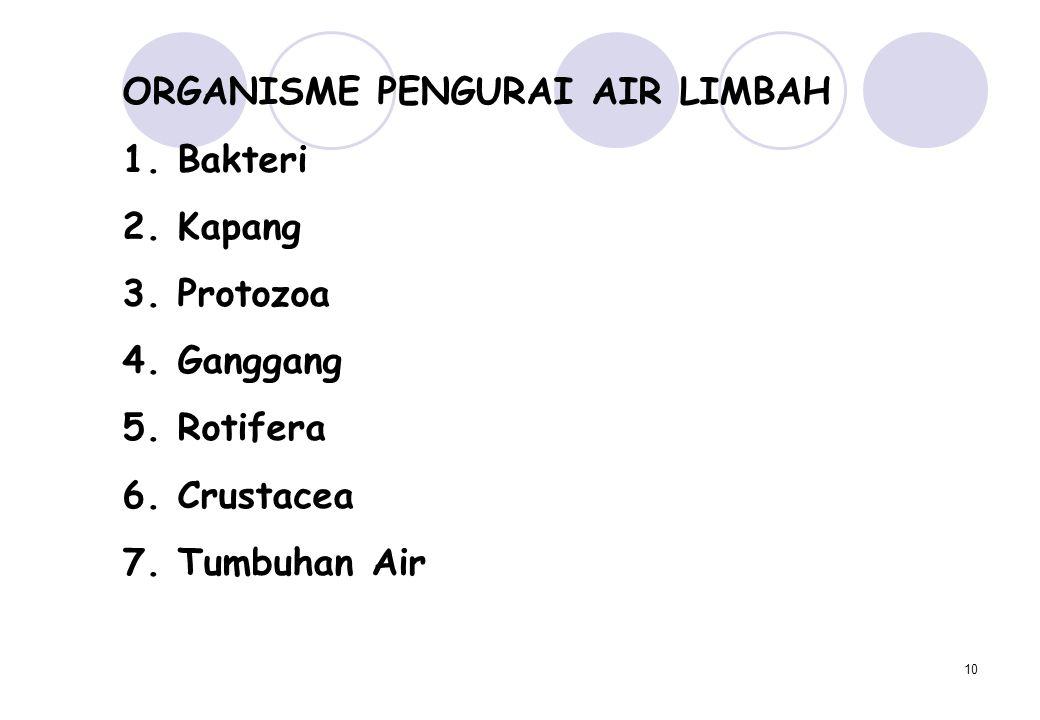 10 ORGANISME PENGURAI AIR LIMBAH 1. Bakteri 2. Kapang 3. Protozoa 4. Ganggang 5. Rotifera 6. Crustacea 7. Tumbuhan Air