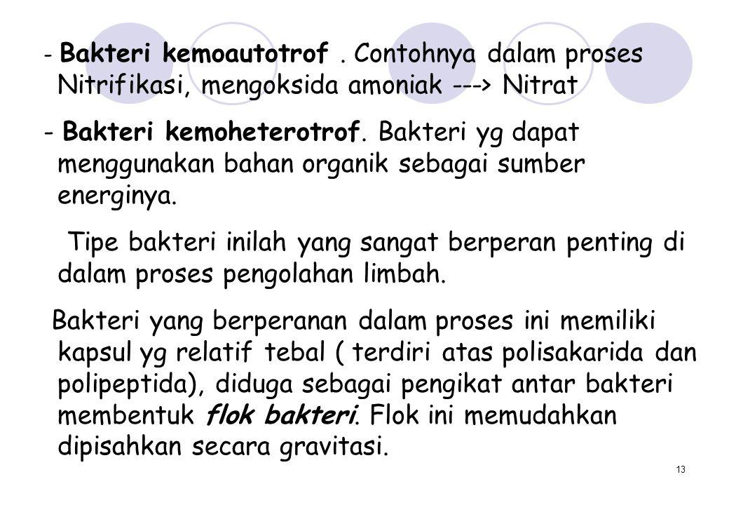 13 - Bakteri kemoautotrof. Contohnya dalam proses Nitrifikasi, mengoksida amoniak ---> Nitrat - Bakteri kemoheterotrof. Bakteri yg dapat menggunakan b