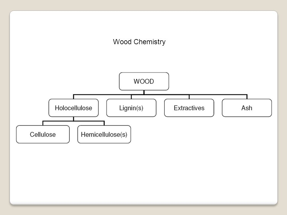 Ekstraktis dapat dibedakan dalam fungsinya dalam kayu : a.