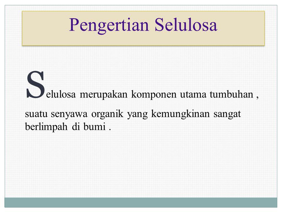 Pengertian Selulosa S elulosa merupakan komponen utama tumbuhan, suatu senyawa organik yang kemungkinan sangat berlimpah di bumi.