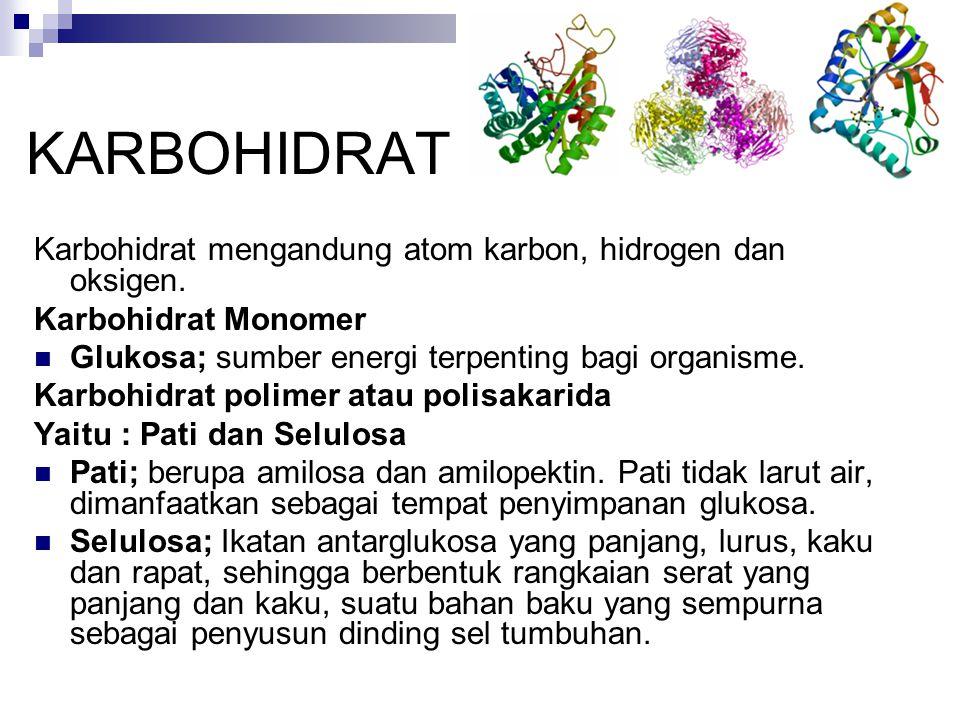 KARBOHIDRAT Karbohidrat mengandung atom karbon, hidrogen dan oksigen. Karbohidrat Monomer Glukosa; sumber energi terpenting bagi organisme. Karbohidra