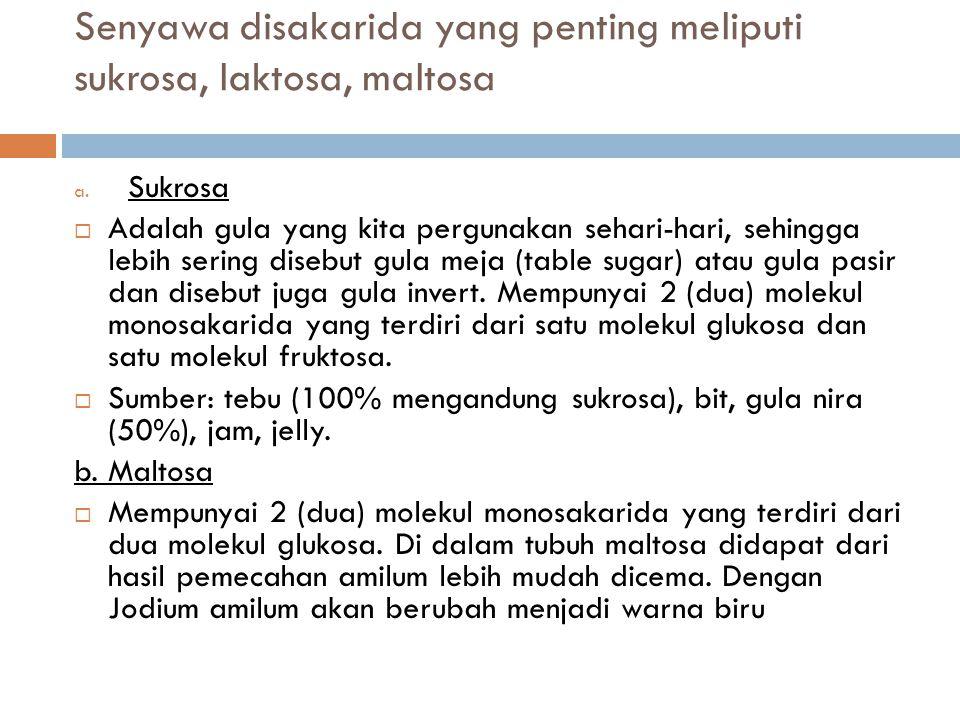 Senyawa disakarida yang penting meliputi sukrosa, laktosa, maltosa a.