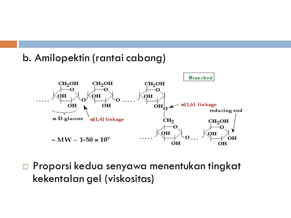 b. Amilopektin (rantai cabang)  Proporsi kedua senyawa menentukan tingkat kekentalan gel (viskositas)