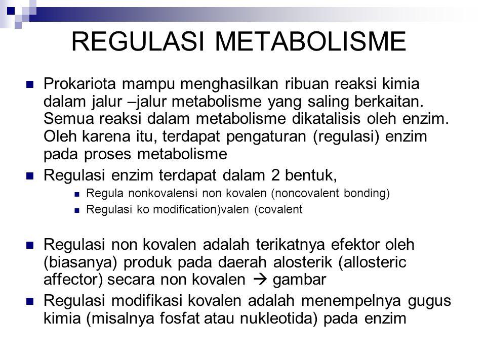 Jenis metabolisme Metabolisme primer  Metabolisme utama dalam sel makhluk hidup  Berhubungan dengan katabolisme dan anabolisme biomolekul : protein, karbohidrat, lemak, dan asam nukleat Metabolisme sekunder  Metabolisme yang berhubungan dengan pembentukan produk-produk khusus yang diperlukan oleh sel dalam jumlah sedikit seperti: biosintesis koenzim, hormon, nukleotida, pigmen, toksin, antibiotika, alkaloid  Metabolisme sekunder menghasilkan metabolit dalam jumlah sediki, namun metabolit tersebut sangat penting bagi kehidupan organisme (mikro/makro) dengan tujuan biologi spesifik