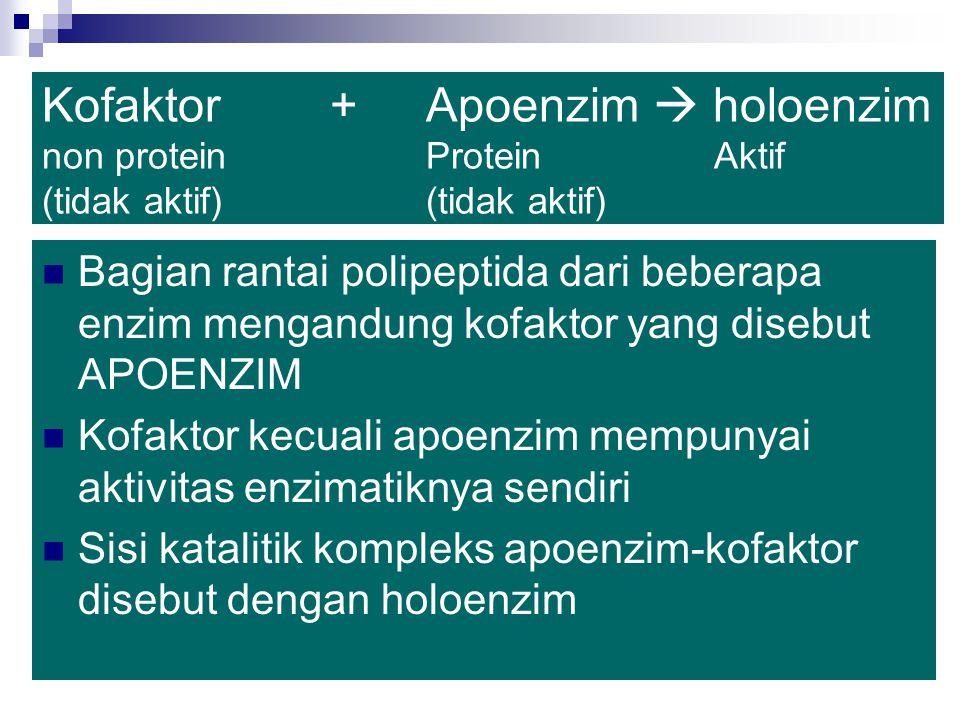Beberapa enzim seperti pepsin, tripsin, dan ribonuklease merupakan protein sederhana yang hanya tersusun dari rantai asam amino Enzim lain mengandung komponen non-protein yang penting untuk fungsi khusus enzim yang disebut dengan kofaktor Ada 3 jenis kofaktor :  1.